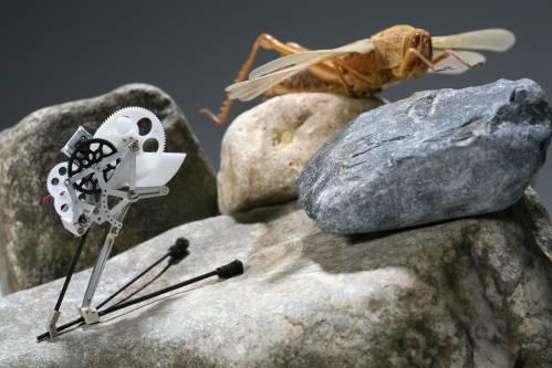 Biomimetischer Mikro-Roboter